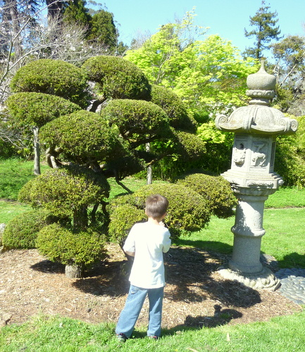 2014 03 15 Japanese Tea Garden, March 15, 2014, 2:14 p.m.